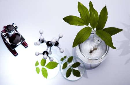 pipeptte: Laboratory