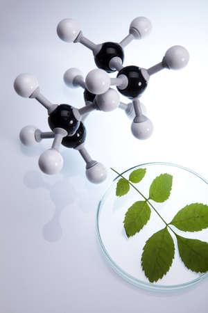 pipeptte: Biotechnology