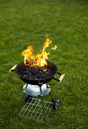 Fire, Hot grilling photo
