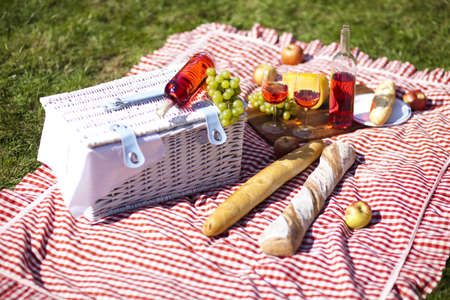 Picnic on the grass Stock Photo - 15244197