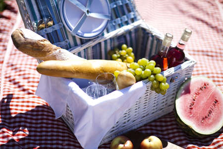 Picnic Stock Photo - 15244004