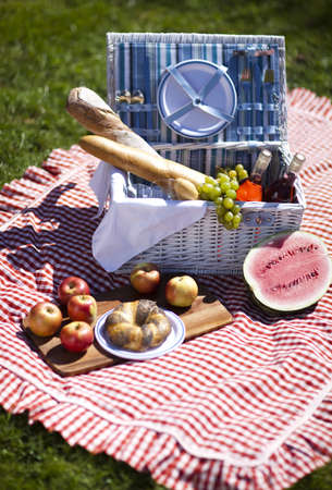 Picnic on the grass Stock Photo - 15244176