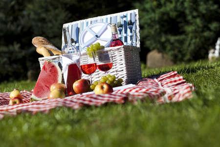 Picnic basket on green lawn photo