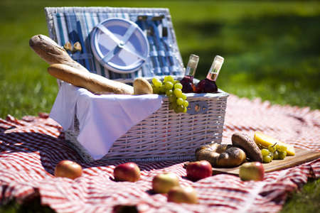Picnic on the grass Stock Photo - 15244002