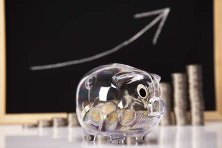 Piggy Bank on a coins diagram Stock Photo - 17875525