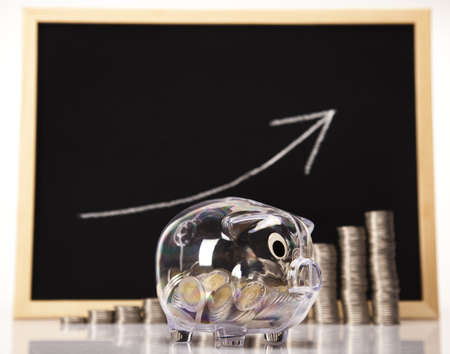 Piggy Bank on a coins diagram Stock Photo - 17875470