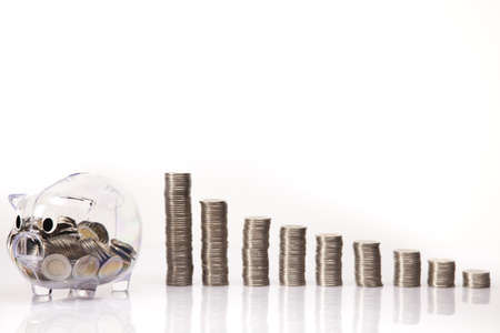 Piggy bank and money Stock Photo - 17875451