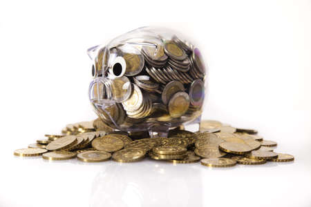 Piggy bank and money  Stock Photo - 17875482