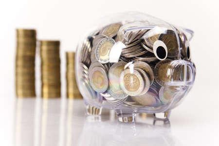 Piggy bank and money  photo