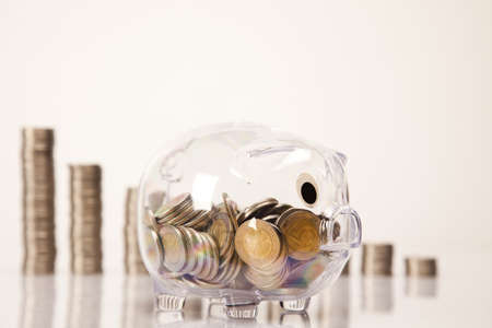 Piggy bank and money  Stock Photo - 17875519