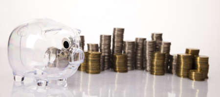 Pig bank and money coin Stock Photo - 17875452