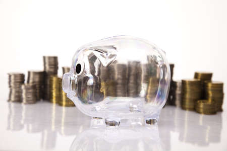 Piggy bank and money  Stock Photo - 17875468