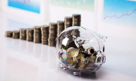 Piggy bank and money  photo