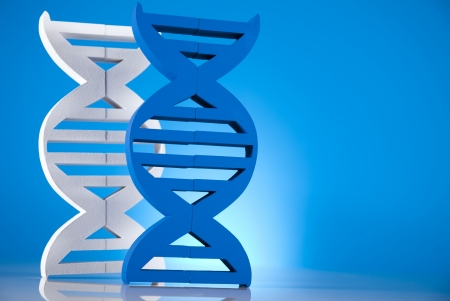 DNA molecules photo