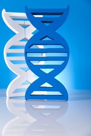 DNA molecules Stock Photo - 19410478