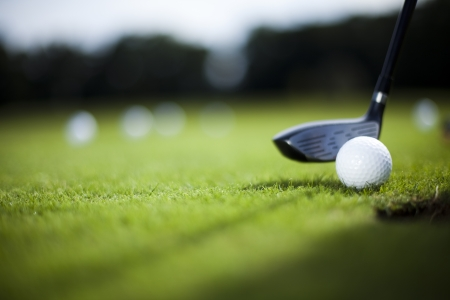 Golf ball on green meadow, driver