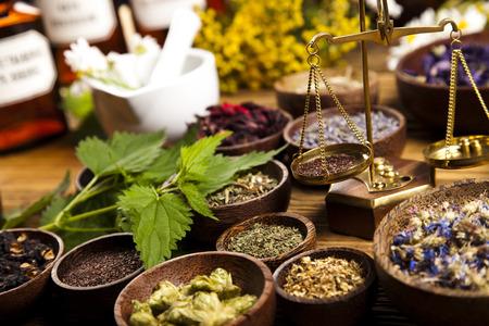Fresh medicinal herbs on wooden