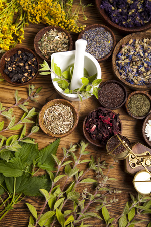 Fresh medicinal herbs on wooden Reklamní fotografie - 31781753