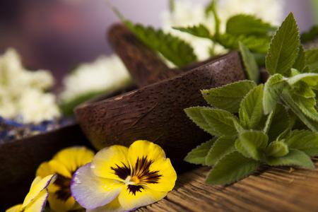 Natürliche Medizin, Kräuter, Mörtel