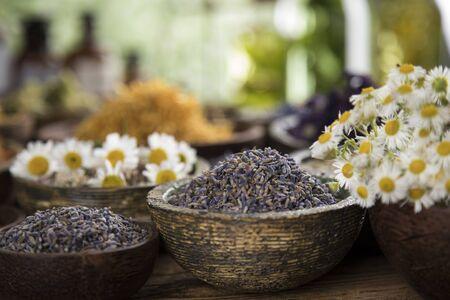 Homeopathy, herbal medicine on wooden table Archivio Fotografico