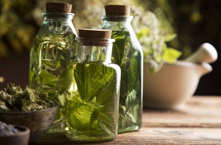 Fresh herbs and oils, wooden table background Archivio Fotografico