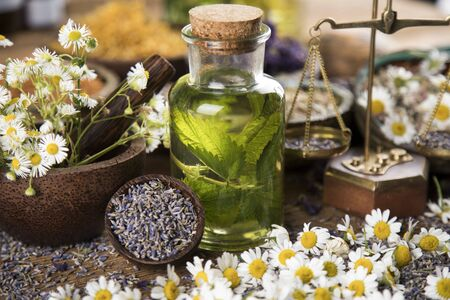Fresh herbs and oils, wooden table background