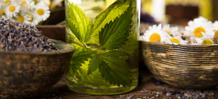 Assorted natural medical, herbs and mortar