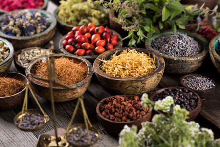 Alternative health, fresh herbal and mortar on wooden background