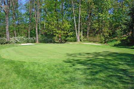 Green with golf hole surronded by trees Stock Photo - 953623