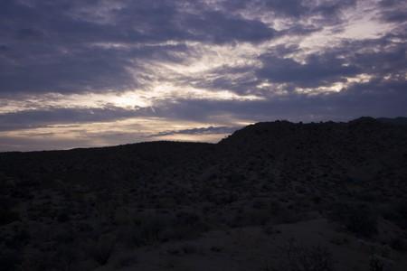 sunrise in Joshua Tree National Park, in the Mojave Desert of Southern California Stock Photo - 4235069