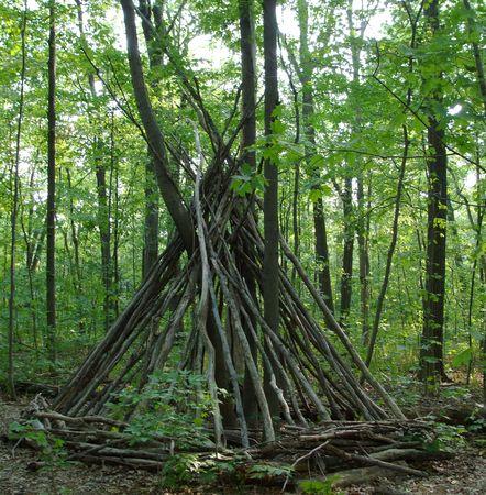 Teepee Made From Tree Branches Zdjęcie Seryjne