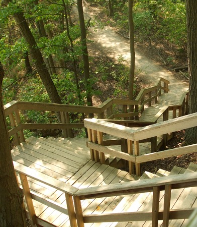 clearing the path: Forest Stairway Stock Photo