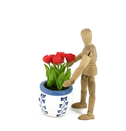 artists mannequin: An artists mannequin is ready to move a flowerpot full of tulips. Stock Photo