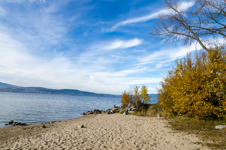 lipno: Shore of Lipno Lake with beach in autumn in Czech Republic