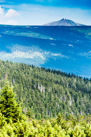 passtime: Very distant view of Snezka in Krkonose National Park (Giant Mountains), the highest mountain of Czech Republic. The view thru the forest and ravine. Stock Photo