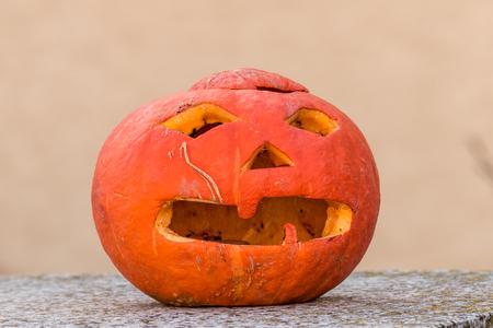 Pumpkin a few days after the holiday helloween. Stock Photo