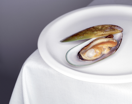 Mussel with white wine sauce on table