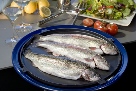 gilt head: Fresh raw sea bream fish ready to be cooked with herbs, wood background.Mediterranean seafood cuisine.