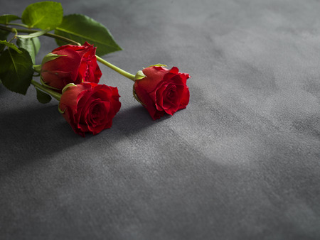 textured: Composition of roses on a grey textured background Stock Photo