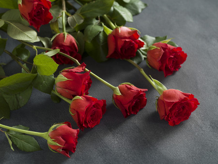 Beautiful bunch of roses on a grey background for a funeral Stock Photo