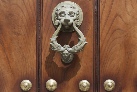 Lion head door knocker