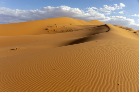 Untouched deserts and Sand Dunes Landscape at Sunrise, Africa Stock Photo