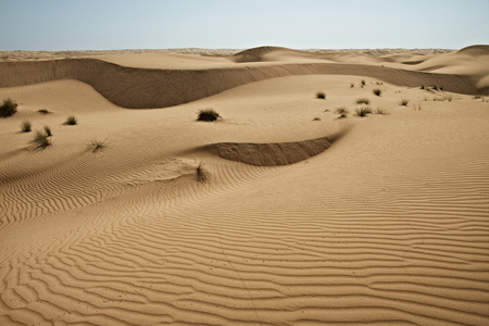 Huge dunes of the desert. Growth of deserts on Earth
