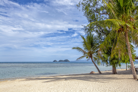 Beautiful tropical Thailand island panoramic with beach. Coconut trees stretch into the sea
