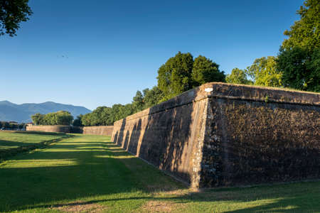 Grass in front of the fortress wall in Lucca.