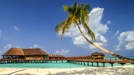 view of the coast of irufushi island with water bungalows, maldives