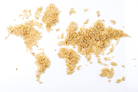 map of the world made of raw natural rice on white background photo