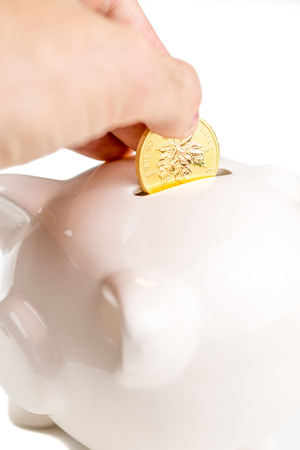 throwing golden maple leaf into ceramic pigg in order to preserve the value of the assets photo