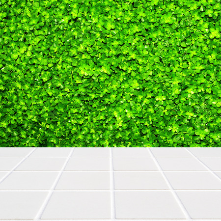 fourleaf: Wall made of four-leaf plant green and floor made of modern beige ceramic mosaic Stock Photo
