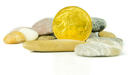 pebblestone: golden buffalo coin with grey pebblestones on white background